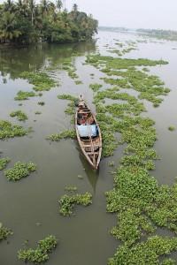 Ernakulam liegt sehr schön am Wasser gelegen.