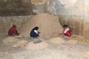 Wir waren in einem Gewürzhandel, der fast nur von lokalen Frauen geführt wird, die sich damit ihren Lebensunterhalt verdienen.
