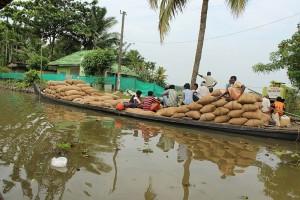 Die Backwaters, ein überwiegend natürliches System aus Kanälen, Flüssen und Seen welches sich durch ganz Kerala zieht. Hier sind Reishändler bei der Arbeit.